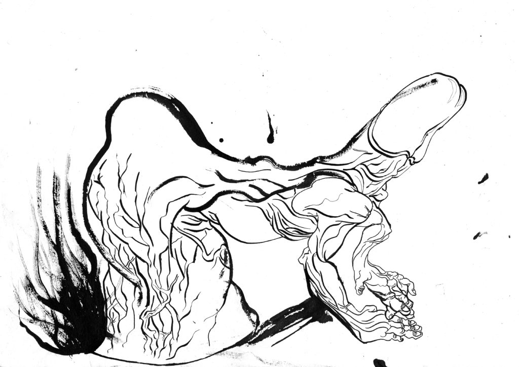 024 pedro herminio